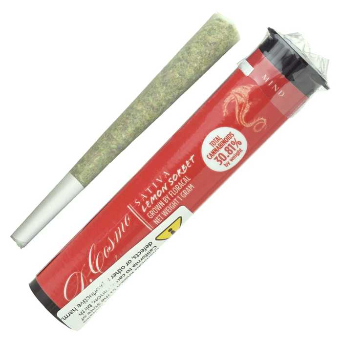 Lemon Sorbet Pre Roll Joint